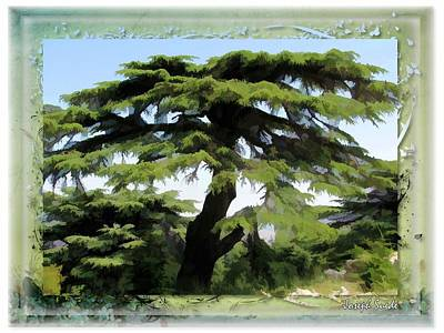 Do-00512 Cedar Forest Art Print by Digital Oil