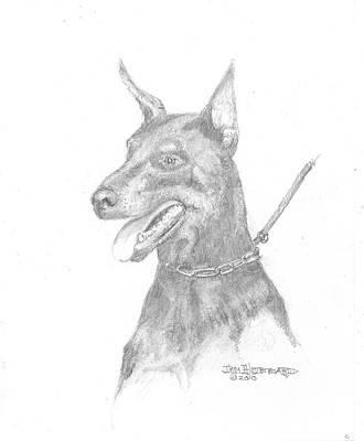 Police Dog Drawing - Doberman Pincher by Jim Hubbard