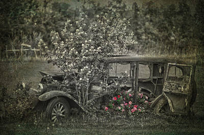 Driven To Find Love  Art Print by Jerry Cordeiro