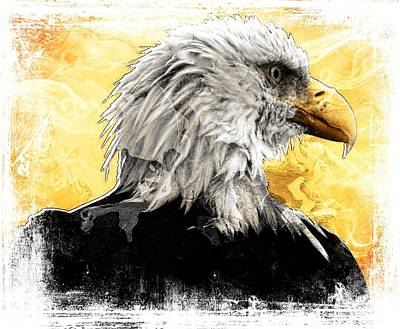Digital Art - Eagle 6 by Carrie OBrien Sibley
