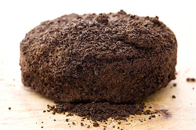 Photograph - Espresso Coffee Grounds by Frank Tschakert