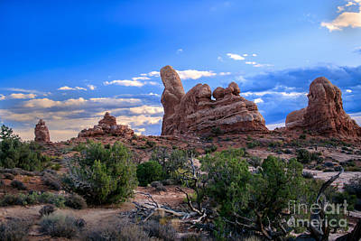 Photograph - Eye View Of Arches by Robert Bales