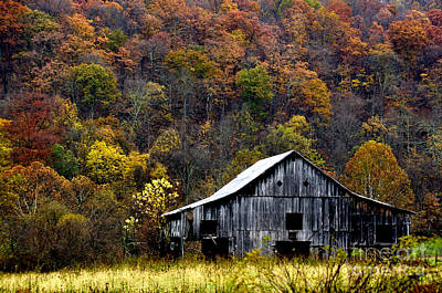 Mail Pouch Barn Photograph - Fall Color Harrison County by Thomas R Fletcher