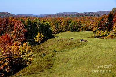 Fall Color Randolph County West Virginia Art Print by Thomas R Fletcher