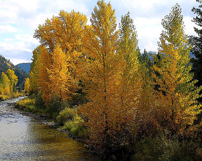Art Print featuring the photograph Fall Colors by Steve McKinzie