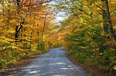 Photograph - Fall In New England by Glenn Gordon