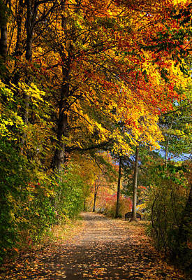Photograph - Fall Pathway by Fred LeBlanc