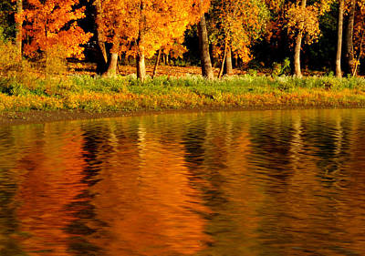 Photograph - Fall Reflections by Coby Cooper