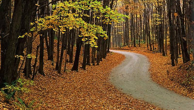 Jb Photograph - Fall Winding Road  by John  Bartosik
