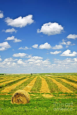 Farm Field At Harvest In Saskatchewan Art Print by Elena Elisseeva