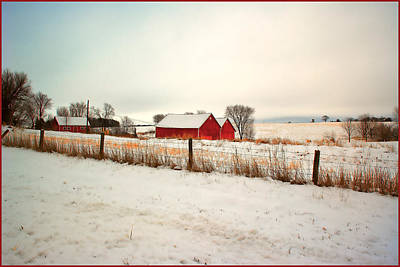 Photograph - Farm by Fuad Azmat