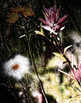 Field Of Feelings  Art Print by Jerry Cordeiro
