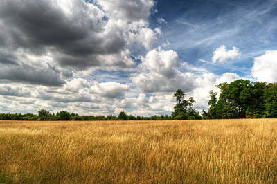 Photograph - Field Of Grass On West Wycombe Hill by Chris Day