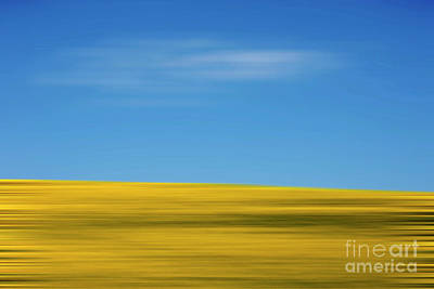 Abstract Movement Photograph - Field Of Sunflowers by Bernard Jaubert