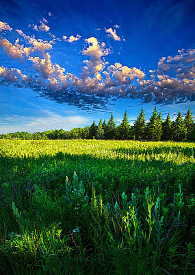 Fields And Dreams Art Print by Phil Koch