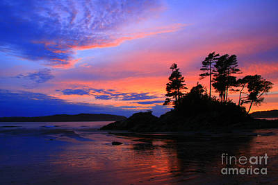 Photograph - Fiery Sky by Frank Townsley