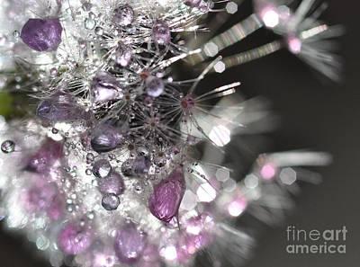 Art Print featuring the photograph Fleur De Cristal by Sylvie Leandre