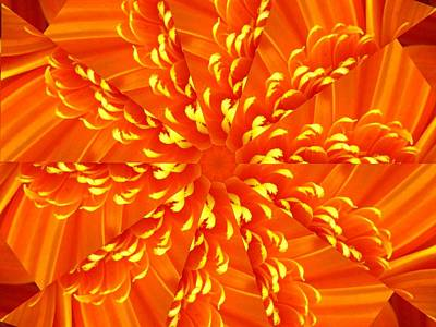 Digital Art - Floral Sunrise by Rhonda Barrett