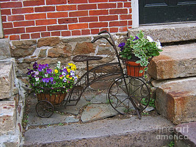 Flower Bicycle Basket Art Print by Val Miller