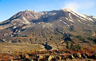 Photograph - Flowers On Mount St. Helens by Athena Mckinzie