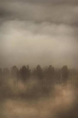 Fog Wall Art Print