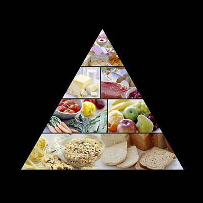 Food Pyramid Art Print by David Munns