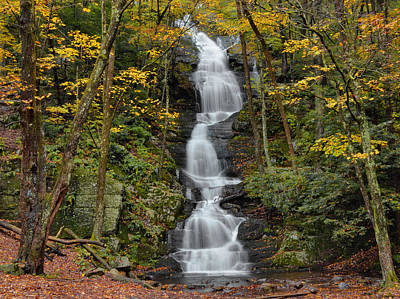 Forest Waterfall In Autumn Art Print by Stephen  Vecchiotti