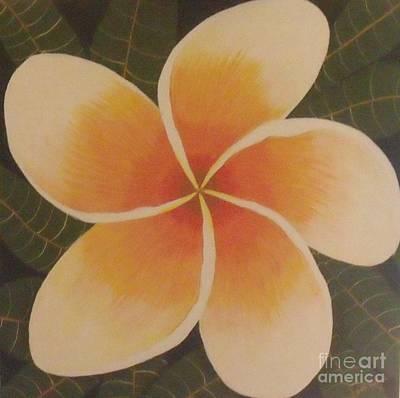 Painting - Frangipani by Debra Piro
