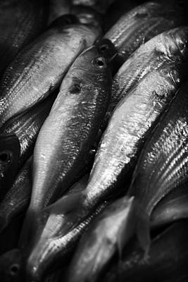 Photograph - Fresh Fish At The Market by Zoe Ferrie