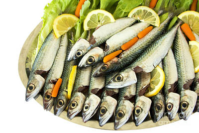 Fresh Uncoocke Fish Art Print by Soultana Koleska