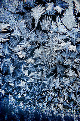 Ice Crystal Photograph - Frost by HD Connelly