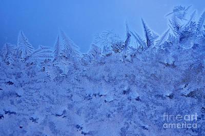 Frost On A Windowpane Art Print by Thomas R Fletcher