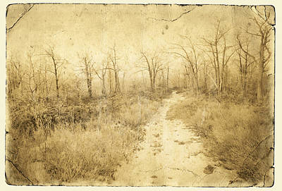 Photograph - Frosty Dawn Snowy Path  by John Stephens