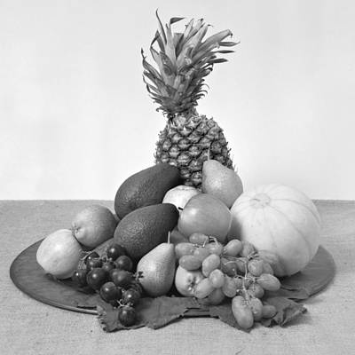 Avacado Photograph - Fruit Tray Still Life by Paul Cowan