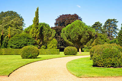 Pleasure Photograph - Garden Path by Tom Gowanlock