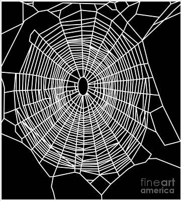 Photograph - Garden Spider Web, Computer Artwork by NASA / Science Source