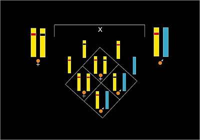 Genetics Of Colour Blindness, Artwork Art Print