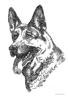 Drawing - German-shepherd-portrait by Gordon Punt