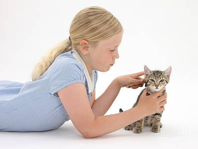 Pet Care  - Girl Grooming Kitten by Mark Taylor