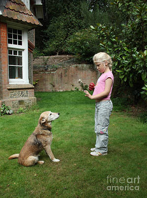House Pet Photograph - Girl Playing With Dog by Mark Taylor