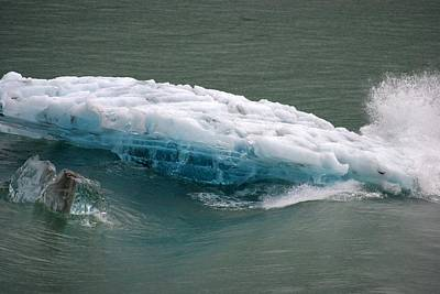Photograph - Glacier by Marilyn Wilson