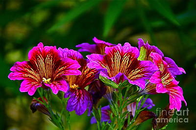 Photograph - Gleaming In Purple And Gold by Byron Varvarigos