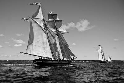 Photograph - Gloucester Schooner Race by Peggie Strachan