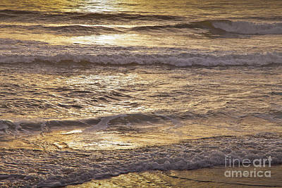 Photograph - Golden Surf by Susan Cole Kelly