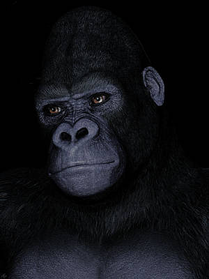 Painting - Gorilla Portrait by Maynard Ellis
