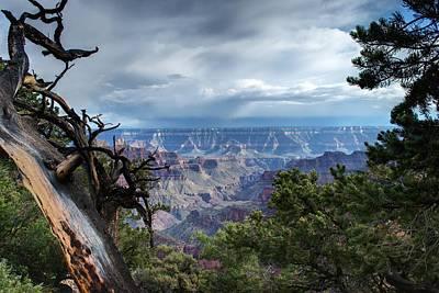 Grand Canyon North Rim After A Storm Art Print by C Thomas Willard