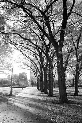 Photograph - Grant Park by Anthony Citro