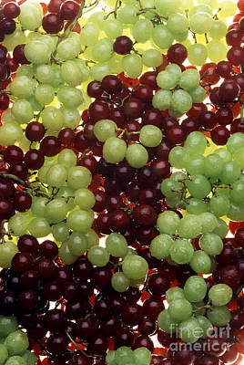Grapes Art Print by Photo Researchers