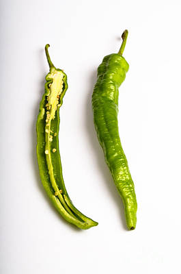 Cut In Half Photograph - Green Chili Pepper by Photo Researchers, Inc.