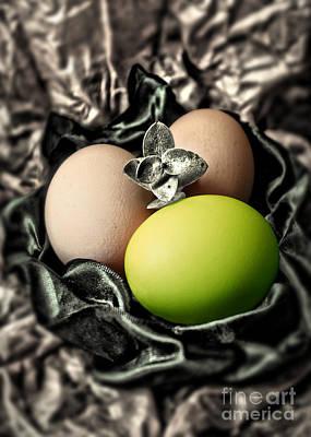 Photograph - Green Classy Easter Egg by Danuta Bennett